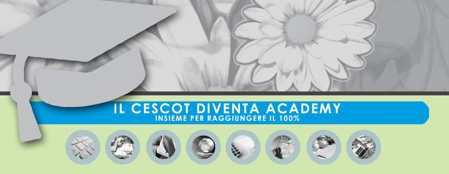 Cescto Rimini